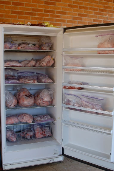 Full freezer.