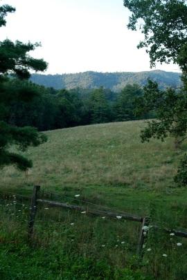 Field Aug 21